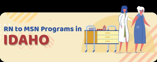 RN to MSN Programs in Idaho